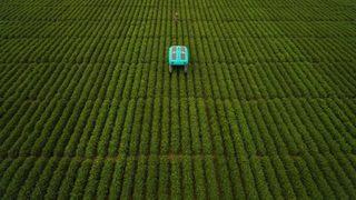 """""""Гугъл"""" изкара роботите на полето"""