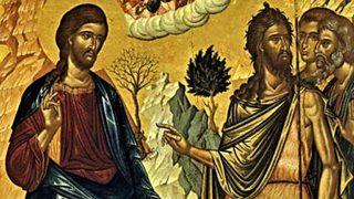 Еньовден, когато билките са най-лековити - България - Дневник